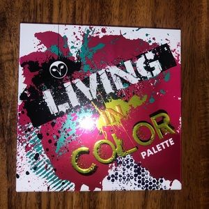 Living in Color eyeshadow pallet
